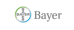 Sequenced site decommissioning – Beyer