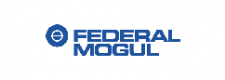 RVA Group decommissioning expertise - Federal Mogul